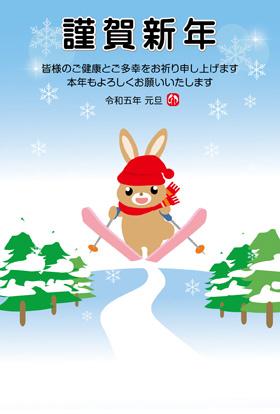 サンプル スキー-5