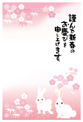 サンプル 橘小紋-3
