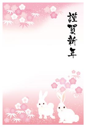 サンプル 橘小紋-4