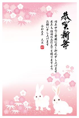 サンプル 橘小紋-5